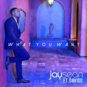 JAY SEAN FT. DAVIDO - What You Want
