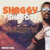 SHAGGY SHAROOF - Soulard